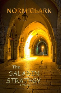 Saladin Cover