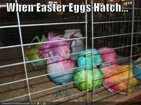 easter-humor-when-easter-eggs-hatch